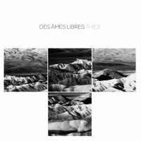 DES ÂMES LIBRES - THICK [LIMITED] LP