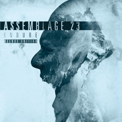 ASSEMBLAGE 23 - ENDURE [LIMITED] LP