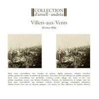 COLLECTION D'ARNELL-ANDREA - VILLERS-AUIX-VENTS [LIMITED] LP