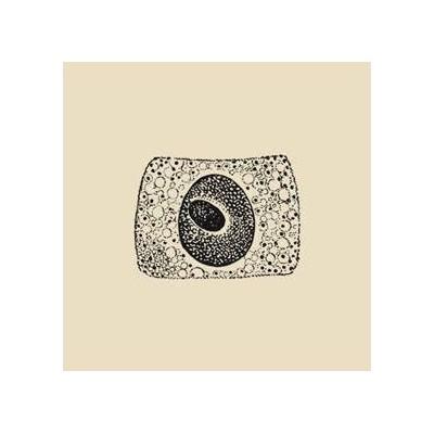 COIL - PORTO [RE-RELEASE+ CD