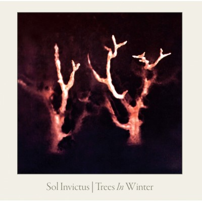 SOL INVICTUS - TREES IN WINTER DIGICD