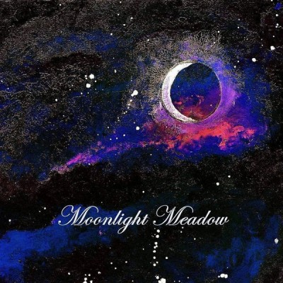 MOONLIGHT MEADOW - MOONLIGHT MEADOW DIGICD