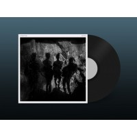 A PROJECTION - SECTION [LIMITED] LP