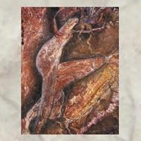 COIL - SWANYARD DIGI2CD
