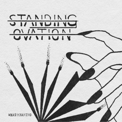STANDING OVATION - WHAT MEANING [LIMITED] 7""
